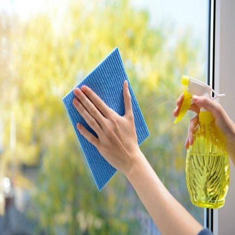 Fenster_Reinigung